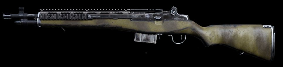 COD-Rifle_EBR14